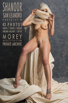 Shanoor California nude art gallery free previews