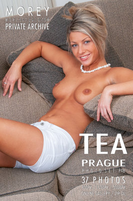 Tea Prague nude art gallery by craig morey